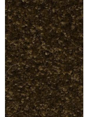 AW Carpet Gaia Equator Teppichboden 44 Luxus Frisé aus Polyester