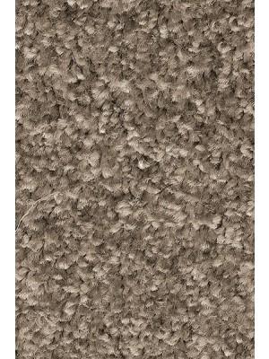 AW Carpet Gaia Equator Teppichboden 97 Luxus Frisé aus Polyester