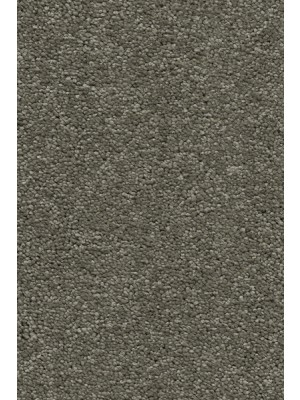 AW Carpet Vivendi Aura Teppichboden 29 Luxus Frisé besonders pflegeleicht