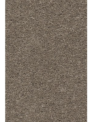AW Carpet Vivendi Aura Teppichboden 37 Luxus Frisé besonders pflegeleicht