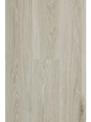BerryAlloc Pure Click 55 Designboden Authentic Oak Light Grey Wood