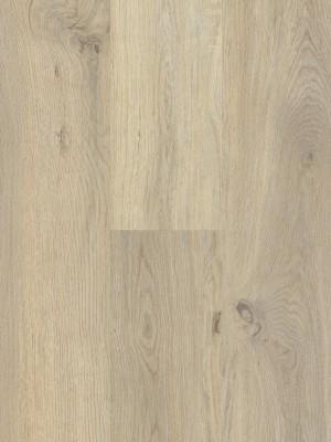BerryAlloc Style 55 DreamClick Vivid Natural Klick-Designboden