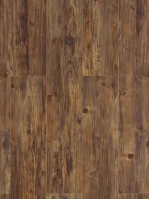 Cortex Aquanatura Dolomit-Pinie Kork-Vinyl Klick-Designboden wasserfest