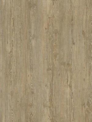 Cortex Vinatura Kalksteinkiefer Designboden Klick Parkett NS 0,3 mm