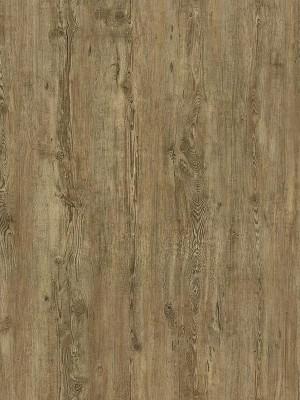 Cortex Vinatura Pinie Designboden Klick Parkett NS 0,3 mm