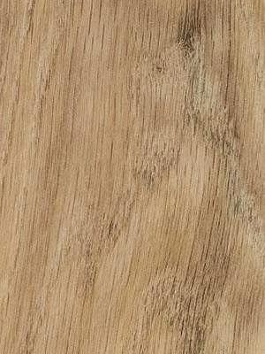 Forbo Allura 0.40 central oak Domestic Designboden Wood zum Verkleben wfa-w66300-040