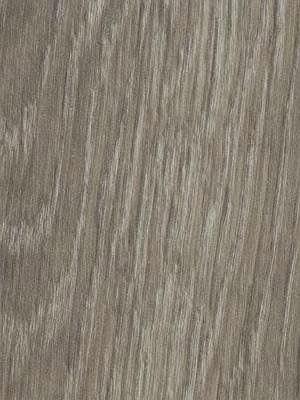 Forbo Allura 0.40 grey giant oak Domestic Designboden Wood zum Verkleben wfa-w66280-040