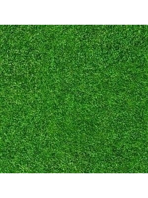 Forbo Flotex Teppichboden Grass Vision Image Objekt