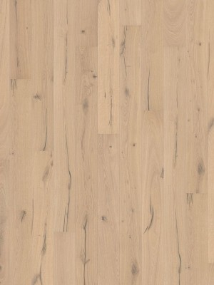 Haro Serie 3500 Landhausdiele Parkett EICHE puroweiß Alabama strukturiert 2V 2,5 mm mit naturaLin