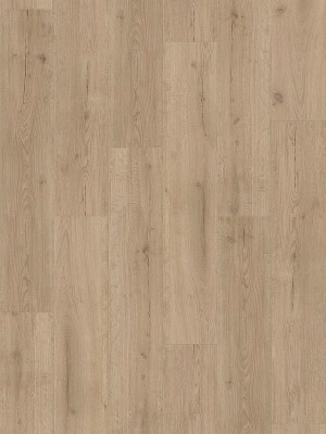 Parador Basic 2.0 Wood Vinyl Eiche Infinity grau lebhafte Struktur