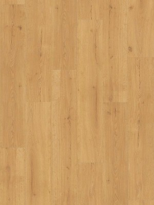 Parador Basic 2.0 Wood Vinyl Eiche Infinity natur lebhafte Struktur