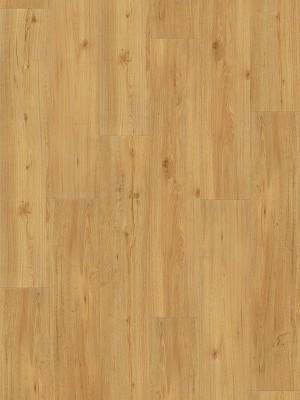 Parador Basic 2.0 Wood Vinyl Eiche natur gebürstete Struktur