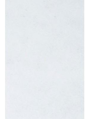 Profi Salsa Teppichboden für Messe weiß mit Schutzfolie, Marine-Rücken