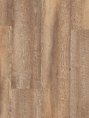 Adramaq Old Wood Vinyl Designboden Esche rustikal geräuchert rustikales Holzdekor, synchrongeprägt