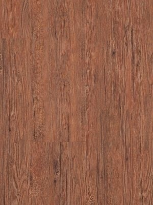 Adramaq Old Wood Vinyl Designboden Esche rustikal braun rustikales Holzdekor, synchrongeprägt