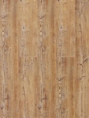 Wicanders Hydrocork Klick-Vinyl Acardian Rye Pine Designboden mit Kork-Mittelschicht