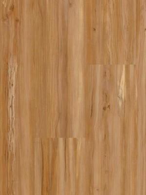 wDB00107-400w Wineo 400 Wood Designboden Vinyl Soul Apple Mellow 1-Stab Landhausdiele zum Verkleben