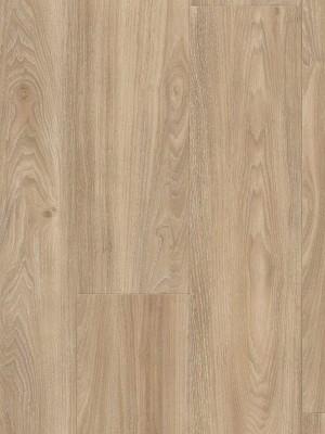 Wineo 400 Wood Designboden Vinyl Compassion Oak Tender 1-Stab Landhausdiele zur Verklebung