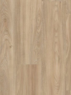 Wineo 400 Wood Click Vinyl Compassion Oak Tender Designboden zum Klicken