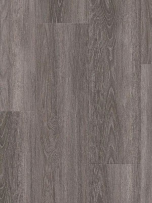 wDLC00116-400w Wineo 400 Wood Click Vinyl Starlight Oak Soft Designboden zum Klicken