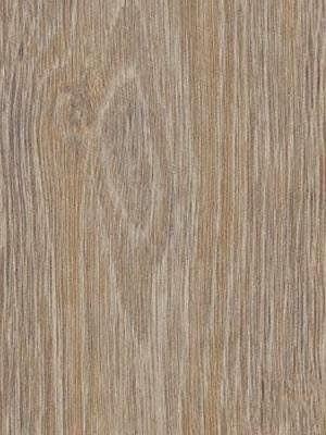 Forbo Allura Click 0.55 steamed oak Designboden mit Klicksystem