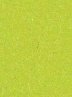 Forbo Linoleum Uni young grass Marmoleum Piano