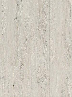 Wicanders Wood Go Vinyl Designboden Eiche Frozen zur Verklebung