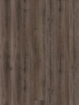 Wineo 1200 wood XXL Click Multi-Layer Call me Tilda Bioboden-Designparkett auf HDF-Träger mit Klicksystem