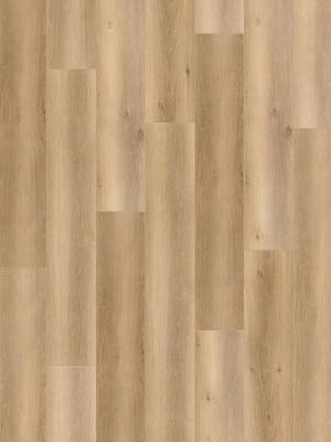 Wineo 1200 wood XL Click Purline Bioboden Welcome Oskar Rigid Designboden mit Klicksystem mit Microfase