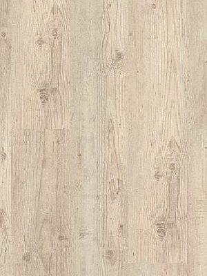 Wineo Purline profi Bioboden Denali Pine Wood Planken zur Verklebung