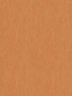 wmf3825-2,5 Forbo Marmoleum Linoleum African desert Fresco Naturboden