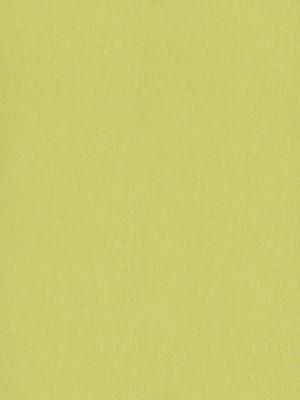 wmf3885-2,5 Forbo Marmoleum Linoleum spring buds Fresco Naturboden