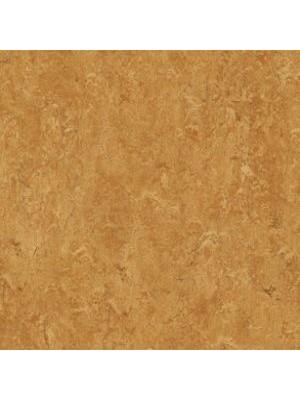 wmr3174-2,5 Forbo Marmoleum Linoleum sahara Real Naturboden