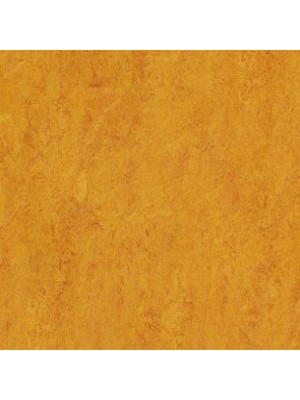 Forbo Marmoleum Linoleum marigold Real Naturboden