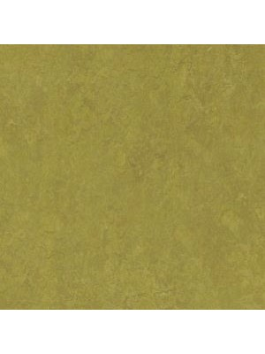 Forbo Marmoleum Linoleum olive green Real Naturboden