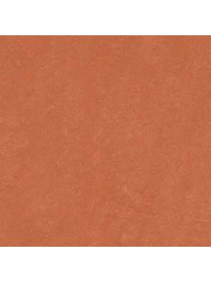 Forbo Marmoleum Linoleum stucco rosso Real Naturboden