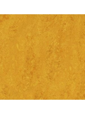 wmr3251-2,5 Forbo Marmoleum Linoleum lemon zest Real Naturboden