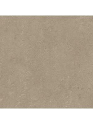 wmr3252-2,5 Forbo Marmoleum Linoleum sparrow Real Naturboden