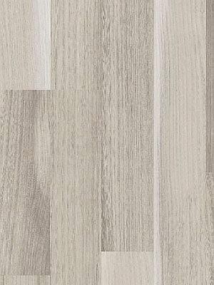 wP1426414 Parador Basic 200 Laminat Akazie grau hochwertig, 3-Stab