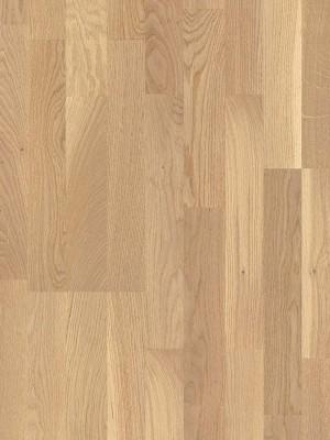 wP1595164 Parador Basic 11-5 Holzparkett Eiche rustikal Pure Fertig-Parkett in Schiffsboden 3-Stab, matt lackiert